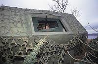 Efter många år som kråkjägare konstruerade Hans Rosén en kråkkoja där skjutgluggarna är placerade i utskjutande överhäng. Det ger möjlighet till ovanligt stora gluggar utan att ljuset faller in i kojan.