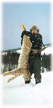 David Lindmark med den lodjurshanne som blev resultatet av en helgs intensiv jakt. Hanen vägde 18 kilo och sköts med en 6,5x55 på 60 meter.