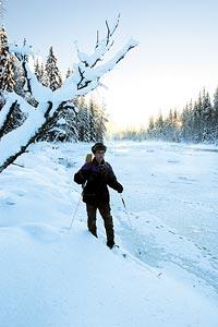Kvicksilvret ligger kring -30 grader när Trappern vittjar sina mink- och mårdfällor.