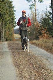 Ingemar har jagat med löshund på markerna i så gott som tjugo år och vet om riskerna med alla vägar, men säger; - Peppar, peppar, än har jag inte mist någon hund i trafiken och vill jag jaga med löshund så finns det inget alternativ.