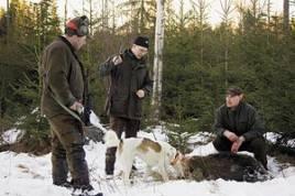 Anders Karlsson, Joakim Ax och Klas Ingesson kan förnöjt konstatera att jakten fick ett lyckligt slut då Joakim fällde den tidigare påskjutna grisen.