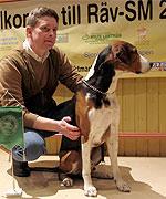 Joakim Johansson, Åby, segrade i årets SM för rävhundar