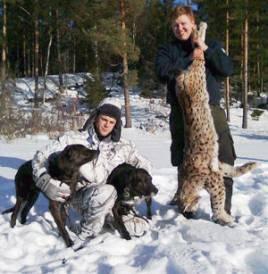 Niklas Friberg, Orsa, med sina hundar Trassel och Earl och skytten Roger Dahlström med den 20 kilo tunga lodjurshanen.