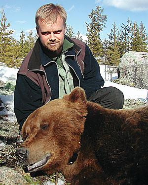 Björnavskjutningens storlek baseras bland annat på Jonas Kindbergs beräkningar. Nu har han och andra forskare tagit fram en ny modell som döpts till RovQuant.