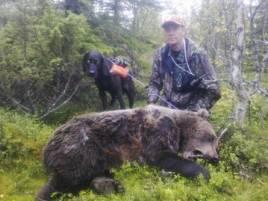Per Englund med Kemmesabbe och den fällda björnhonan.