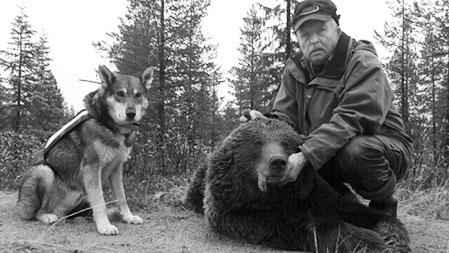 Lars Stenbergo och björnhunden Urak med björnhonan som Robert Salomonsson sköt