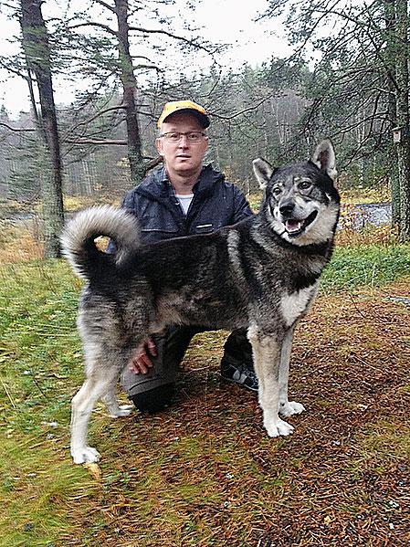 Leif Ottosson, Ånge med jämthunden Buster, årets vinnare i svenska mästerskapen för älghundar