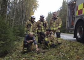 En lyckad räddningsinsats fick ut Mateus Danielssons tyska jaktterrier från grytet i vägbanken. Foto: Privat: