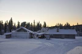 Kuljakt på fåglar i snölandskap är vad Thomas Ekberg och MIkael Jägare ägnar sig åt i kvällens avsnitt.