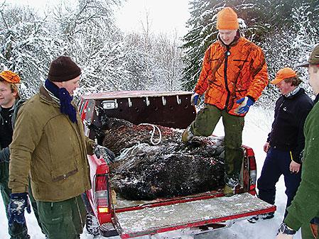 Användandet av bil och andra tekniska hjälpmedel under jakt kan alltid diskuteras.