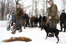Christer Karlsson som arrangerande jakten deltog också som hundförare med sin smålandsstövare Felix.