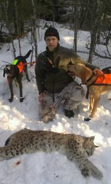 David Sundqvists hundar fann under ett eftersök det tredje lodjuret tidigare idag utanför Deje. Plotthundarna heter King och Texas.