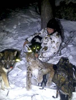 Nathalie med sitt andra lodjur tillsammans med Frisko och Pelton.