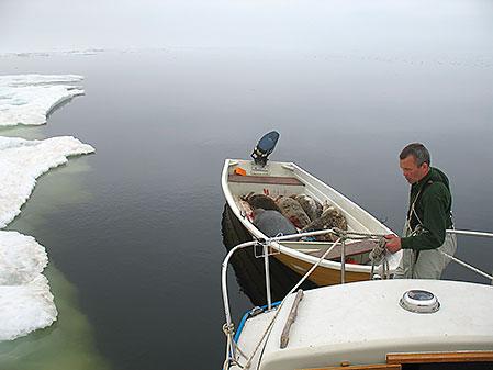Släpbåten används för den praktiska jakten när man väl når sälisen, men kan också underlätta transporter av skjutna sälar. Eric Lindroth säkrar båten inför bogseringen hem.