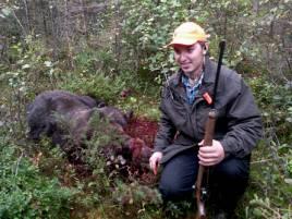 Johan Örtstam, Purnu, fällde den största björnen, en märkt hane på 185 kg.
