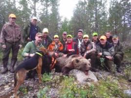 Den lyckade björnjakten i Hede/Vemdalen bedrevs som samjakt mellan flera jaktlag.