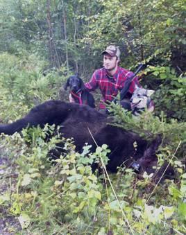Nu på morgonen fällde Andreas Brandt gängets andra björn för veckan. Duktiga hundar var Klint och Vilda.