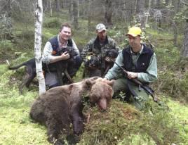 Efter ett långdraget eftersök lyckades Jimmie Mårtensson och Johan Öhman med sina plotthundar att hitta björnen och till slut kunde Arne Zackrisson fälla den.