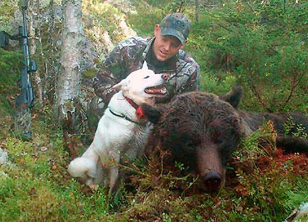 Jörgen Seijsing och hans vita älghund Bozz efter den lyckade björnjakten