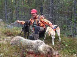 Grundaren av Björnpoolen, Anders Lindqvist, fick idag själv skjuta en björn när de ryckte ut till Råndalen, väster om Hede. Hundarna heter Hoss och Helga.