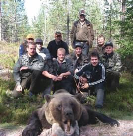 Ett 10-tal björnjägare i Bossendal genomförde en lyckad jakt med plotthundarna Rapp och Barbro. Skytten Mikael Westerling sitter rakt över björnhuvudet.