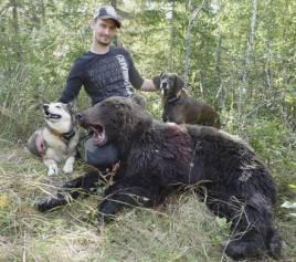 Martin Westerling fällde en hanbjörn i Älvdalen i går för Per-Ove Anderssons hundar