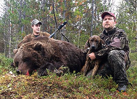 Johan Karlsson tillsammans med en björnhona på 215 kilo som fälldes för Remis hundar på Gällivare Skogssamebys marker.