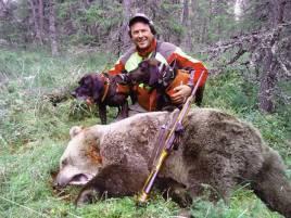 Efter flera timmars jakt fällde Anders Bodin denna björnhona på Svartåsens jaktlags marker utanför Särna.