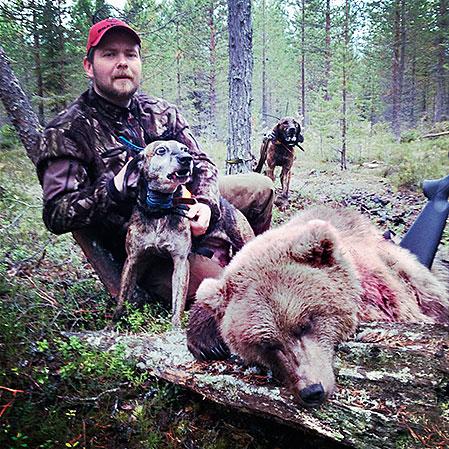 Ett lyckat avslut! Remi med den fällda björnen och plotthundarna Lion och Mack.