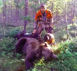 För ett par dagar sedan fällde Jan Larsson, denna björnhane på 177 kg, också i Särna. Även denna gång var det Ruger och Junior som stod för grovjobbet.