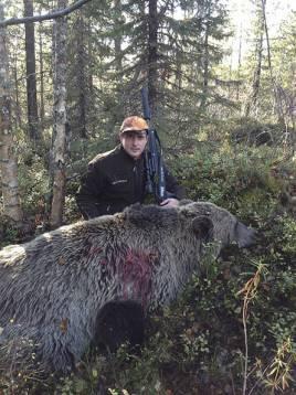 Robert med Pelton och Urak vid en hanbjörn tidigare i veckan.