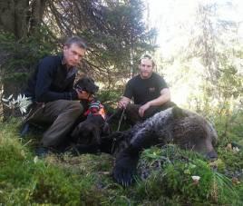 Jonathan Lindqvist och skytten Hjalmar Marntell, Mattes jaktlag, pustar ut efter den lyckade jakten.