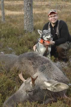 Redan som unghund visade Gransjöbergets Magnum ypperliga kvalitéer som älghund. Amund Skoglund såg en stjärna och fin familjehund. Foto: Wayne Van Zwoll.