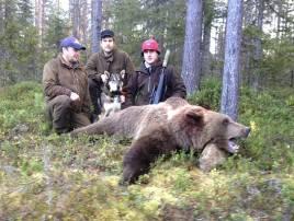 På årets sista björnjaktsdag fällde Robert Salomonsson en björnhane i Järvträsk utanför Glommersträsk. På bilden syns även Mikael Jonsson, t v och i mitten Mikael Johansson, Mausjaur sameby.