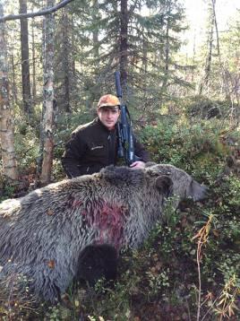Robert Salomonsson misstänktes för tjuvjakt, men släpptes efter förhör. Arkivbild. Björnhona som sköts för en dryg vecka sedan utanför Överkalix i ett annat jaktlag.