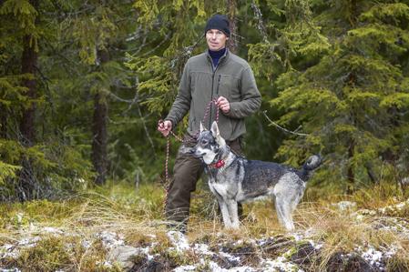 Ett team i skogen. Peter och Kougstabackens Isa.