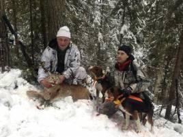 Gårdagens lokatt fälldes av Dan Larsson, Junsele, och den tredje för Stefan Lindströms hundar i vinter.