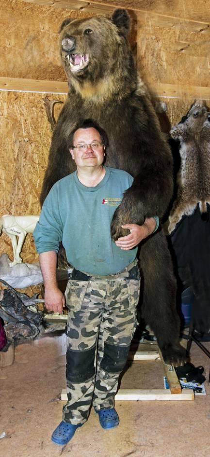 Jan Fredriksson har stoppat upp Sveriges största björn, Loke, som avlivades på grund av ålderskrämpor när han var 33 år gammal. Loke vägde då 450 kilo.