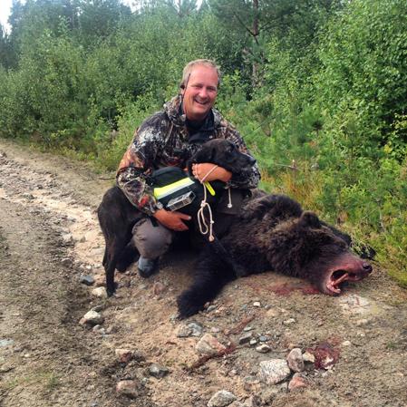 Efter ett par timmars arbete av plotten Blaser kunde Jonas Lännbjer, Karlstad, fälla den påskjutna björnhonan. Vikten uppskattas till cirka 80 kg.