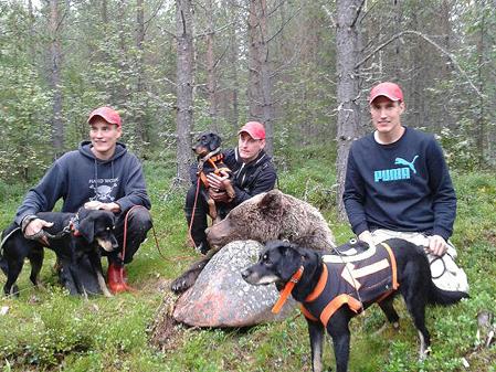 Bröderna Falk, Mikael, Lars-Gunnar och Magnus, tillsammans med sina smålandsstövare Timo, Dunder och Svarten.