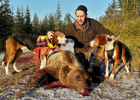 En vecka före björnjakten orkade inte Stefan Lindström, Norrbo, lyfta studsaren ordentligt efter en axeloperation. I höst hoppas han på att kompisar ska följa honom in på björnståndet och skjuta om han inte snabbt blir bättre.