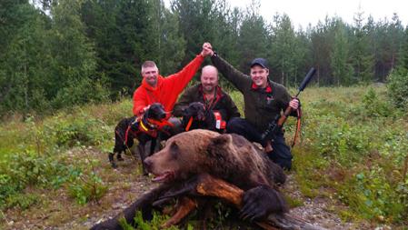 Darrel Jonet, Ralph Persson och Fredrik Ängh med en björnhanne  på 211 kg. De två plotthundarna Xena och RJ (Ruger Junior) stod för  hundjobbet.