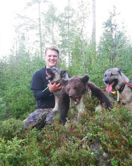 Erik med björnen och sina två gråhundar Passat Cassa och Dalkölens Birk.