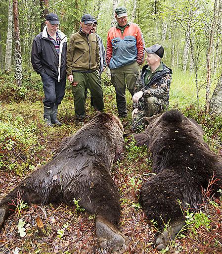 Håkan Malmin, sittande t.h. berättar för jaktkompisarna i Nybrännets jaktlag om den spännande jakten. Foto: Roger C Åström