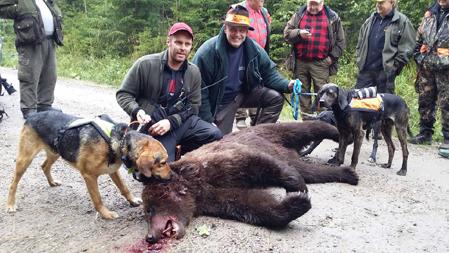 Hundföraren Hasse Nornholm med blandrasstövaren Gunvald, samt skytten och jaktledaren Roger Barrefjord i Lövåsens jaktlag.