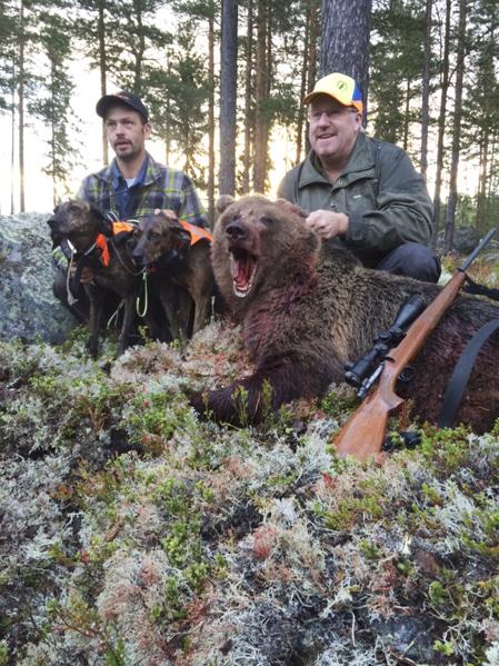 Skytten Patrik Nilsson (th) och hundföraren Fredrik Geidnert med hundarna Kheira och Matilda vid den fällda björnhonan.