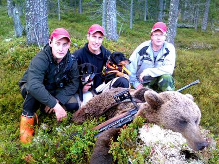 Lars-Gunnar Falk fällde morgonens björn i Rymdalen, t h Mikael Falk och Johan Gustafsson.