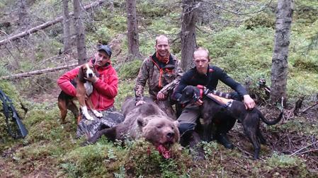 Stefan Lindström och Bull, Alexander Fagerlund och Henrik Lindkvist med Rex vid den fällda björnen.