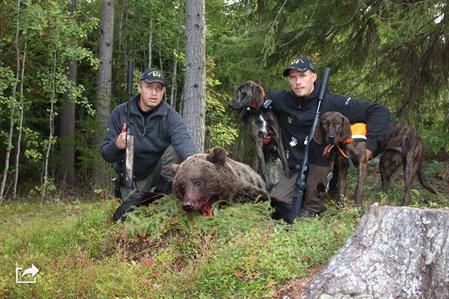 Lars och Robin Strömkvist med dagens björnhanne på 105 kilo.