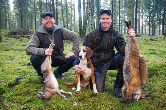 Leif och Erik Malm med sin räv- och harhund, Smedmarkens Drilla.